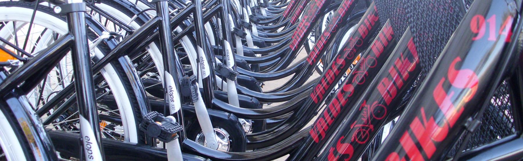 Alquiler de bicicletas Costa Ballena