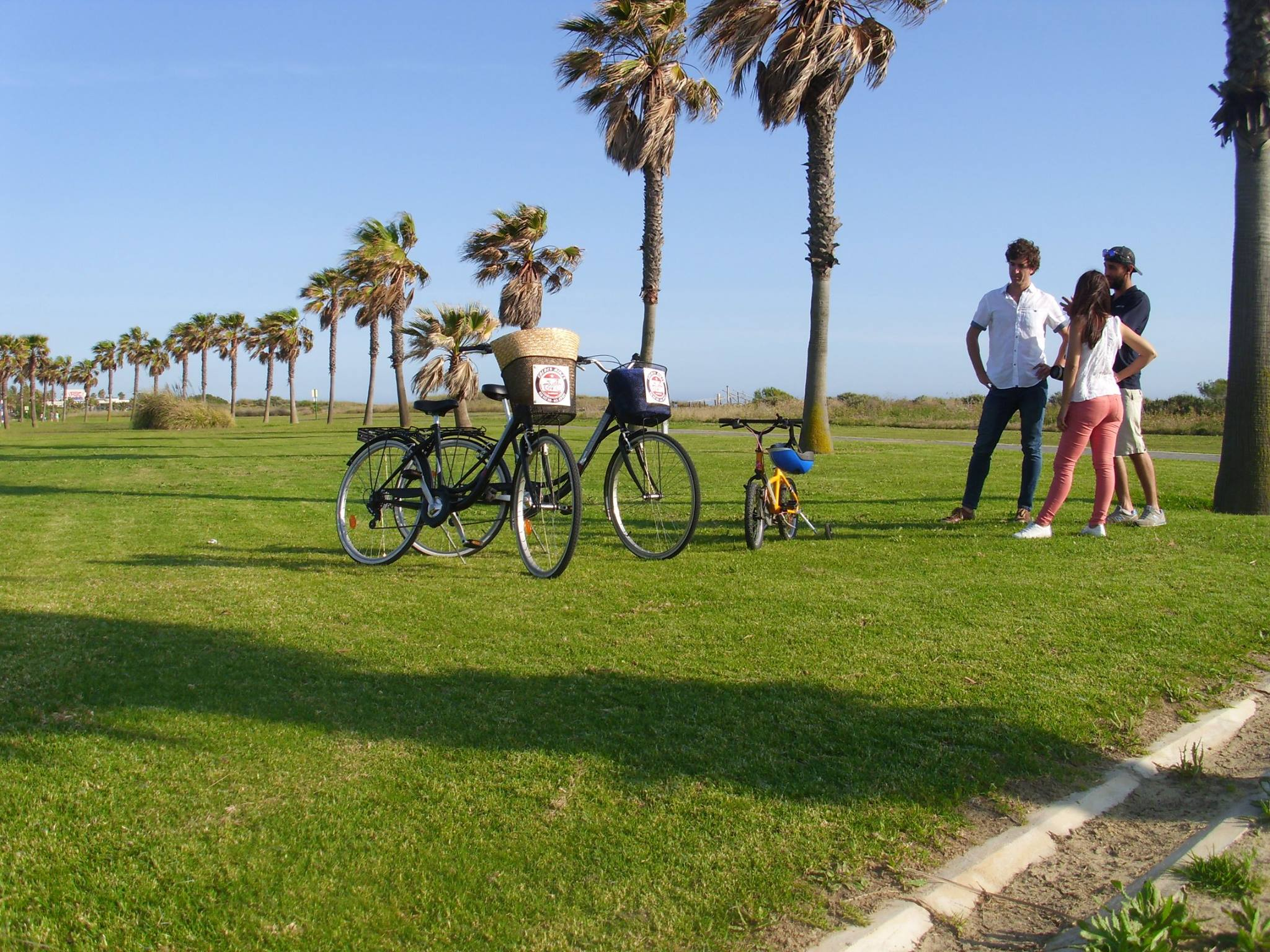 bicicletas costa ballena y rota