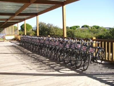 alquiler de bicicletas parque los toruños