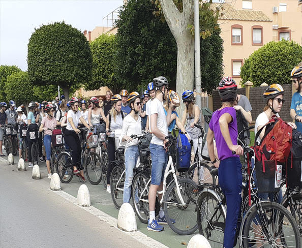 alquiler de bicicletas rota