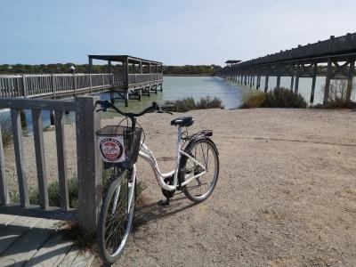 bicicletas parque de los toruños